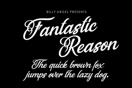 Fantastic-Reason