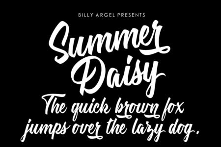 Summer-Daisy